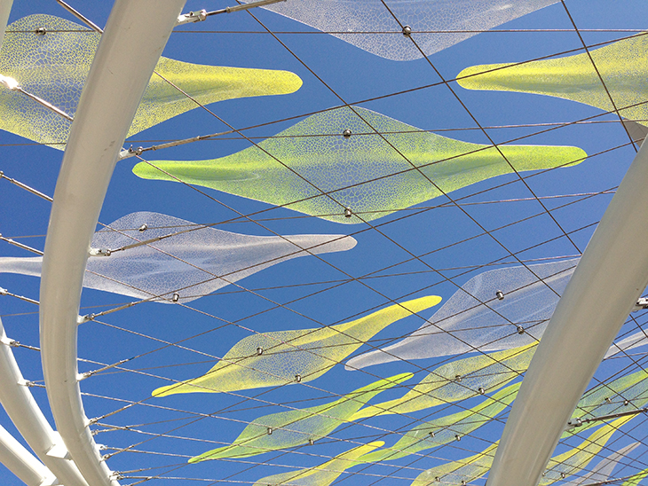 Andrew Crowther - Arup - Canopy Close Up