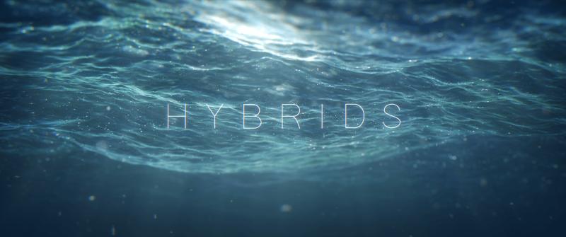 Hybrids-Image01